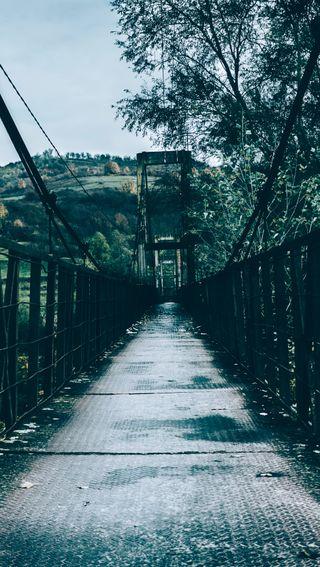 Обои на телефон мост, зеленые, дерево, moody, autum, arhitecture