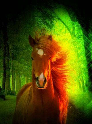 Обои на телефон лошадь, природа, 3д, 3d