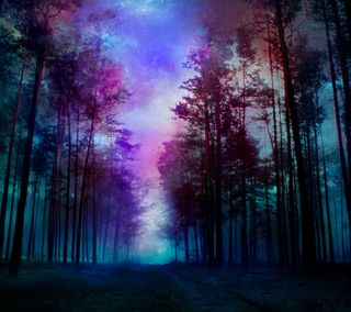 Обои на телефон фантазия, лес, fantasy forest
