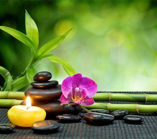 Обои на телефон спа, релакс, расслабляющие, орхидея, камни, дзен, бамбук, relaxing spa