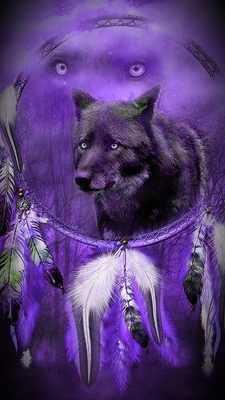 Обои на телефон мечта, фиолетовые, животные, волк, dream capter