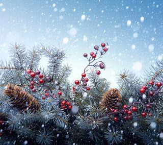 Обои на телефон украшение, сезон, рождество, декор, ветви, christmas decor, christmas branches