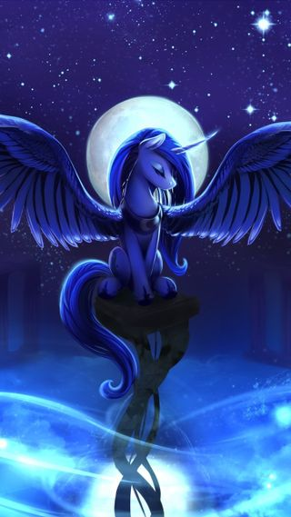Обои на телефон пони, мой, маленький, крылья