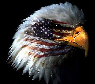 Обои на телефон орел, американские, zedgeamerica