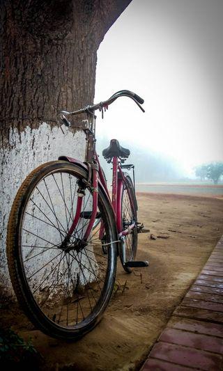Обои на телефон дороги, я, черные, цветы, путешествие, природа, поездка, любовь, деревья, девушки, винтаж, велосипед, ride with me, love