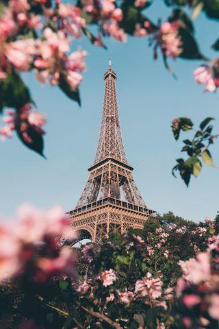Обои на телефон тур, тони, старк, токио, рок, париж, магия, звезда, башня