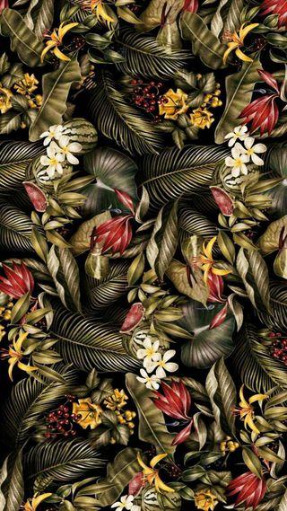 Обои на телефон джунгли, цветы, природа, листья