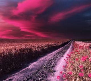 Обои на телефон природа, поле, пейзаж, небо, дорога