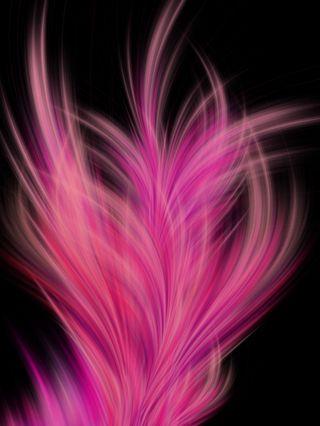 Обои на телефон перья, фон, розовые, перо, hd