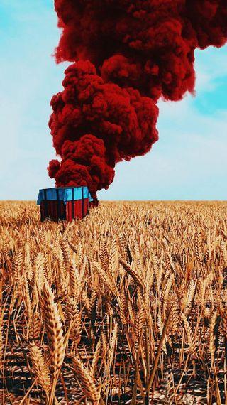 Обои на телефон пшеница, поле, пабг, мобильный, игрок, pubg, jogos, jogo, hd