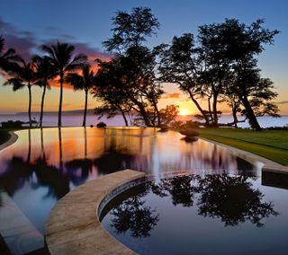 Обои на телефон рай, тропические, спокойствие, спокойные, солнце, природа, небо, закат, живописные, деревья, вечер, sunset in paradise
