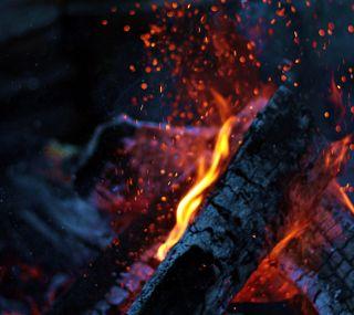 Обои на телефон макро, природа, пламя, огонь, красые, дерево