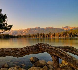 Обои на телефон аргентина, озеро, деревья, горы