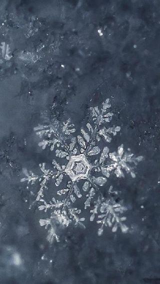 Обои на телефон холод, снежинки, снег, рождество, мороз, зима