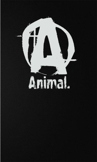 Обои на телефон тренировка, спортзал, люмия, логотипы, животные, бренды, 1020