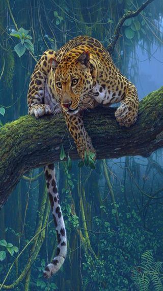 Обои на телефон леопард, злые, жизнь, животные, джунгли, дерево, leopard on a tree
