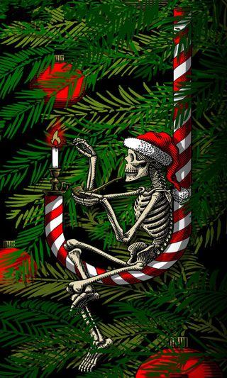 Обои на телефон конфеты, скелет, рождество, орнамент, кости, дерево, xmas bones, candy cane