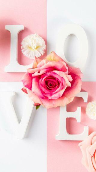 Обои на телефон love, любовь, розы, чай