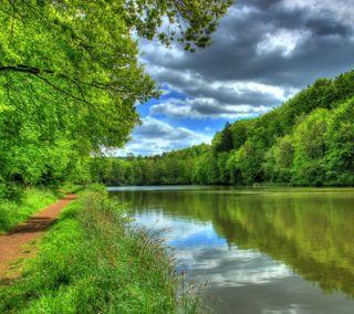 Обои на телефон река, облака, дерево, вода, tropic, hd