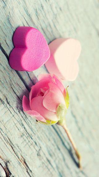 Обои на телефон валентинки, цветы, сердце, розы, розовые, любовь, tenderness, love