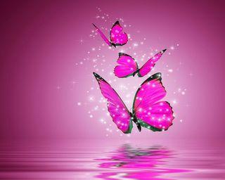 Обои на телефон крутые, новый, дизайн, розовые, животные, бабочки, яркие, блестящие