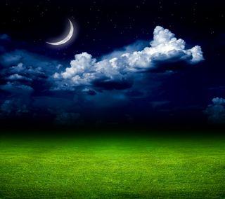 Обои на телефон moon field grass, moon light, пейзаж, луна, свет, трава, поле