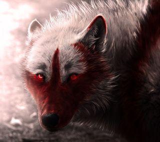 Обои на телефон кровь, собаки, волк