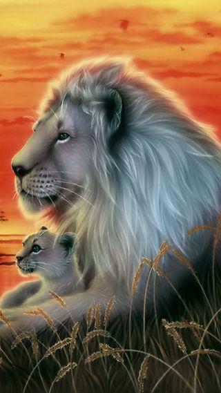 Обои на телефон отец, лев, father lion