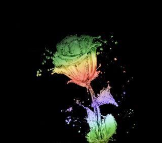 Обои на телефон черные, цветы, синие, розы, красые, красочные, зеленые, желтые