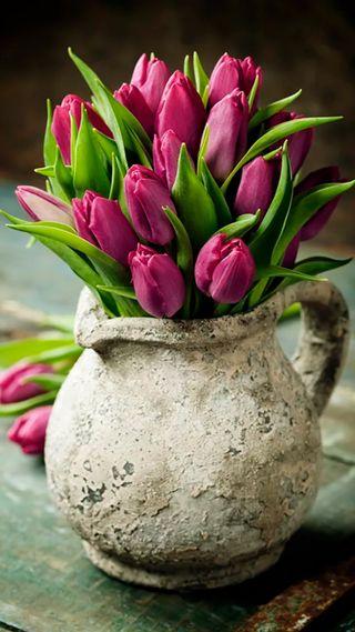 Обои на телефон тюльпаны, цветы, розовые, природа, ваза, букет