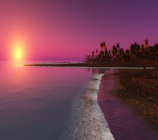 Обои на телефон природа, пляж, пейзаж, пальмы, закат, деревья