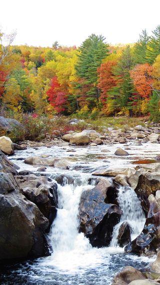 Обои на телефон водопад, цветные, сша, осень, новый, красочные, usa, nh fall, new hampshire