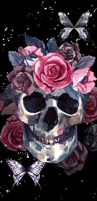 Обои на телефон иллюстрации, череп, цветы, тьма, розы, рисунки, любовь, красота, акварель, skulls n roses, love