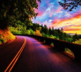 Обои на телефон тень, фиолетовые, улица, лес, красочные, закат, дорога, деревья
