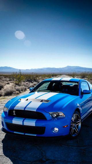 Обои на телефон шелби, форд, синие, машины, авто, ford shelby, ford