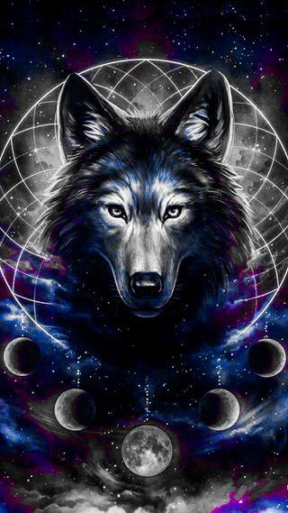 Обои на телефон тень, черные, рисунки, прекрасные, волк, wolf drawing