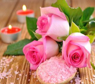 Обои на телефон свечи, сердце, розы, розовые, приятные, природа, подарок, любовь, love