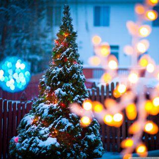 Обои на телефон санта, рождество, праздник, повод, новый год, дерево, аниме, абстрактные