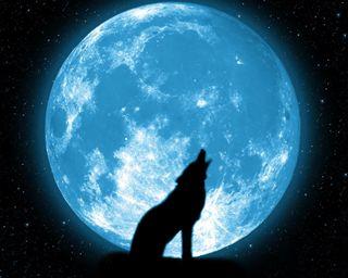 Обои на телефон galaxy, howling, галактика, темные, луна, звезда, волк, тень