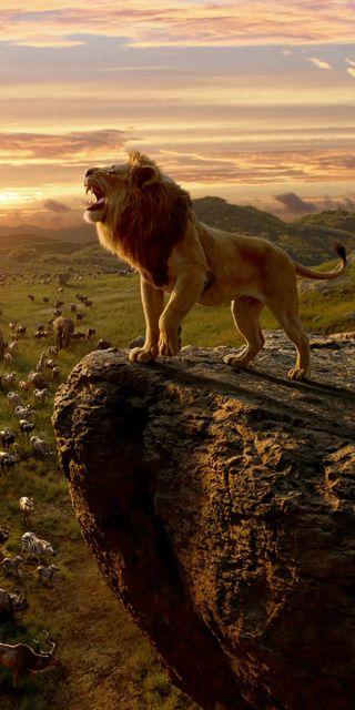Обои на телефон черные, лев, кошки, космос, король, белые, simba, le roi lion, land