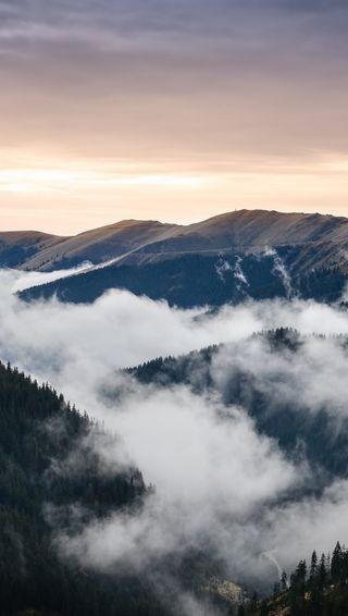 Обои на телефон румыния, облака, лес, ель, деревья, горы, romanian mountains