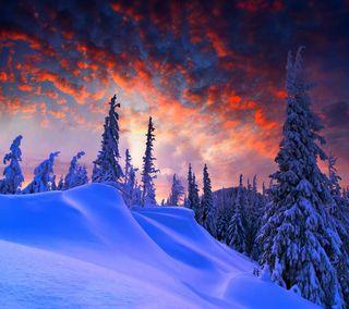 Обои на телефон сумерки, снег, облака, небо, зима, дерево, twilight winter