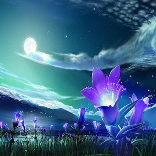 Обои на телефон цветы, фантазия, синие, природа, ночь, мир, лилия, зеленые, night lily, land