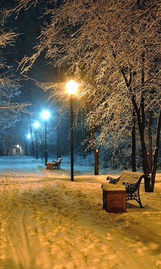 Обои на телефон холод, сезон, природа, парк, новый, крутые, зима, hd