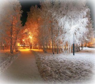 Обои на телефон путь, снег, свет, зима, деревья, winter snow, winter light, light path