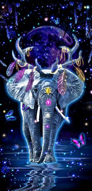 Обои на телефон слон, фантазия, симпатичные, прекрасные, перья, красочные, девчачие, волшебные, бабочки