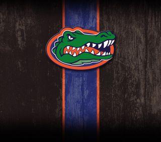 Обои на телефон флорида, университет, колледж, gators