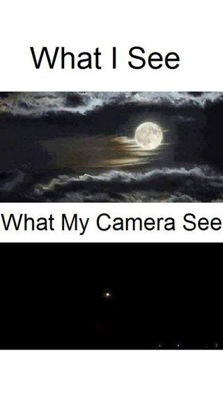 Обои на телефон мой, камера, забавные, видеть, what, my camera see