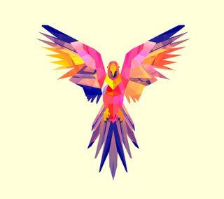 Обои на телефон попугай, птицы, красочные