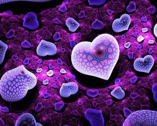 Обои на телефон фрактал, цифровое, фиолетовые, синие, сердце, абстрактные, 3д, 3d